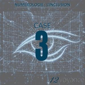 Nombre d'inclusion 3